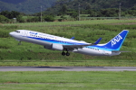 sumihan_2010さんが、新石垣空港で撮影した全日空 737-881の航空フォト(飛行機 写真・画像)