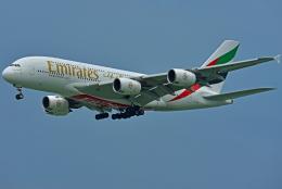 Souma2005さんが、香港国際空港で撮影したエミレーツ航空 A380-842の航空フォト(飛行機 写真・画像)