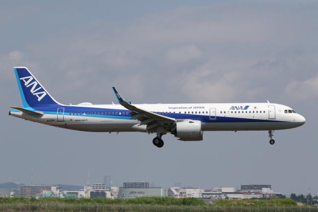 やまけんさんが、仙台空港で撮影した全日空 A321-272Nの航空フォト(飛行機 写真・画像)