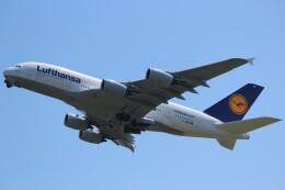cassiopeiaさんが、成田国際空港で撮影したルフトハンザドイツ航空 A380-841の航空フォト(飛行機 写真・画像)