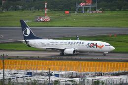 ポン太さんが、成田国際空港で撮影した山東航空 737-85Nの航空フォト(飛行機 写真・画像)