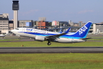 sumihan_2010さんが、伊丹空港で撮影した全日空 737-781の航空フォト(飛行機 写真・画像)