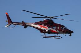 A.Tさんが、八尾空港で撮影した朝日航洋 430の航空フォト(飛行機 写真・画像)
