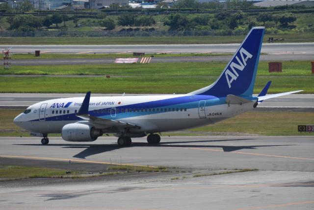 空が大好き!さんが、伊丹空港で撮影した全日空 737-781の航空フォト(飛行機 写真・画像)