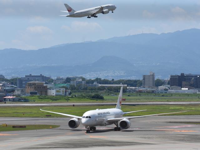 空が大好き!さんが、伊丹空港で撮影した日本航空 787-8 Dreamlinerの航空フォト(飛行機 写真・画像)
