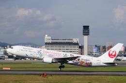 kaz787さんが、伊丹空港で撮影した日本航空 767-346/ERの航空フォト(飛行機 写真・画像)