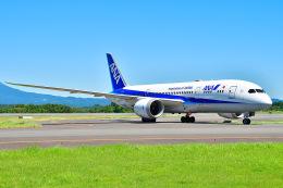 EY888さんが、鹿児島空港で撮影した全日空 787-8 Dreamlinerの航空フォト(飛行機 写真・画像)