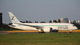 redbull_23さんが、成田国際空港で撮影したZIPAIR 787-8 Dreamlinerの航空フォト(飛行機 写真・画像)