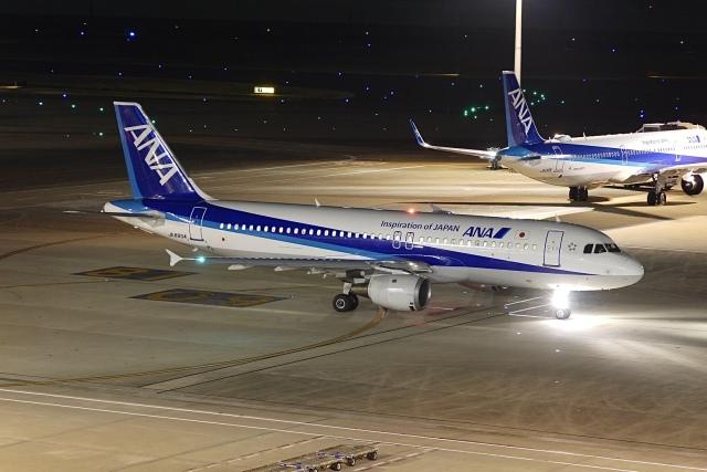 flying_horseさんが、羽田空港で撮影した全日空 A320-211の航空フォト(飛行機 写真・画像)
