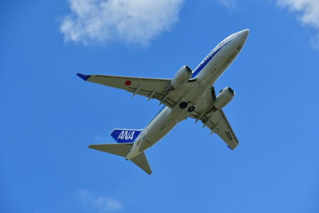 バークレーの犬さんが、宮崎空港で撮影した全日空 737-781の航空フォト(飛行機 写真・画像)
