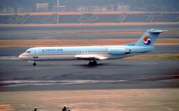 @たかひろさんが、成田国際空港で撮影した大韓航空 100の航空フォト(飛行機 写真・画像)