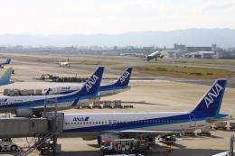 Hiro-hiroさんが、福岡空港で撮影した全日空 A320-211の航空フォト(飛行機 写真・画像)