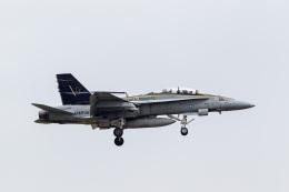 ファントム無礼さんが、横田基地で撮影したアメリカ海兵隊 F/A-18D Hornetの航空フォト(飛行機 写真・画像)