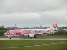 ノリださんが、宮古空港で撮影した日本トランスオーシャン航空 737-446の航空フォト(飛行機 写真・画像)