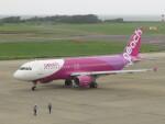 エアキンさんが、新潟空港で撮影したピーチ A320-214の航空フォト(飛行機 写真・画像)