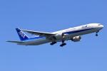 walker2000さんが、羽田空港で撮影した全日空 777-381の航空フォト(飛行機 写真・画像)