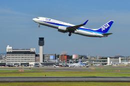 航空フォト:JA59AN 全日空 737-800