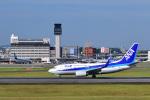 かえでさんが、伊丹空港で撮影した全日空 737-781の航空フォト(飛行機 写真・画像)