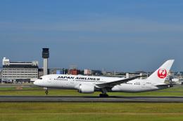 かえでさんが、伊丹空港で撮影した日本航空 787-8 Dreamlinerの航空フォト(飛行機 写真・画像)