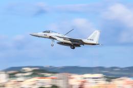 KANE0722さんが、那覇空港で撮影した航空自衛隊 F-15J Eagleの航空フォト(飛行機 写真・画像)