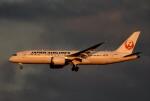 鉄バスさんが、成田国際空港で撮影した日本航空 787-8 Dreamlinerの航空フォト(飛行機 写真・画像)
