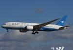 tassさんが、成田国際空港で撮影した厦門航空 787-8 Dreamlinerの航空フォト(飛行機 写真・画像)