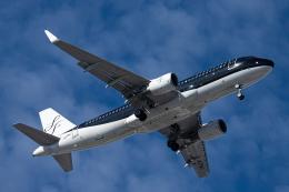 SGR RT 改さんが、羽田空港で撮影したスターフライヤー A320-214の航空フォト(飛行機 写真・画像)