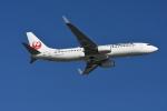 シュウさんが、羽田空港で撮影した日本航空 737-846の航空フォト(飛行機 写真・画像)