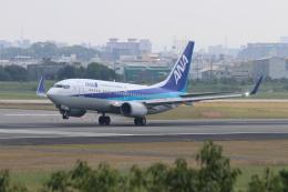 O.TAKUMAさんが、伊丹空港で撮影した全日空 737-781の航空フォト(飛行機 写真・画像)