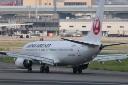O.TAKUMAさんが、伊丹空港で撮影した日本航空 737-846の航空フォト(飛行機 写真・画像)