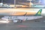 B747‐400さんが、羽田空港で撮影した春秋航空 A320-214の航空フォト(飛行機 写真・画像)