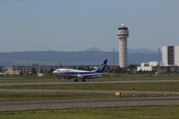yuu@HKD/RJCHさんが、新千歳空港で撮影した全日空 737-781の航空フォト(飛行機 写真・画像)