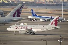 flying_horseさんが、羽田空港で撮影したカタールアミリフライト A319-133X CJの航空フォト(飛行機 写真・画像)