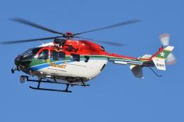 ブルーさんさんが、名古屋飛行場で撮影した愛媛県消防防災航空隊 BK117C-2の航空フォト(飛行機 写真・画像)