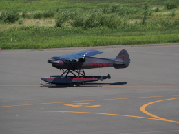 ここはどこ?さんが、札幌飛行場で撮影したニセコ・アビエーション CC19-180 XCubの航空フォト(飛行機 写真・画像)