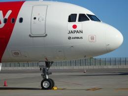 parurunさんが、中部国際空港で撮影したエアアジア・ジャパン A320-216の航空フォト(飛行機 写真・画像)