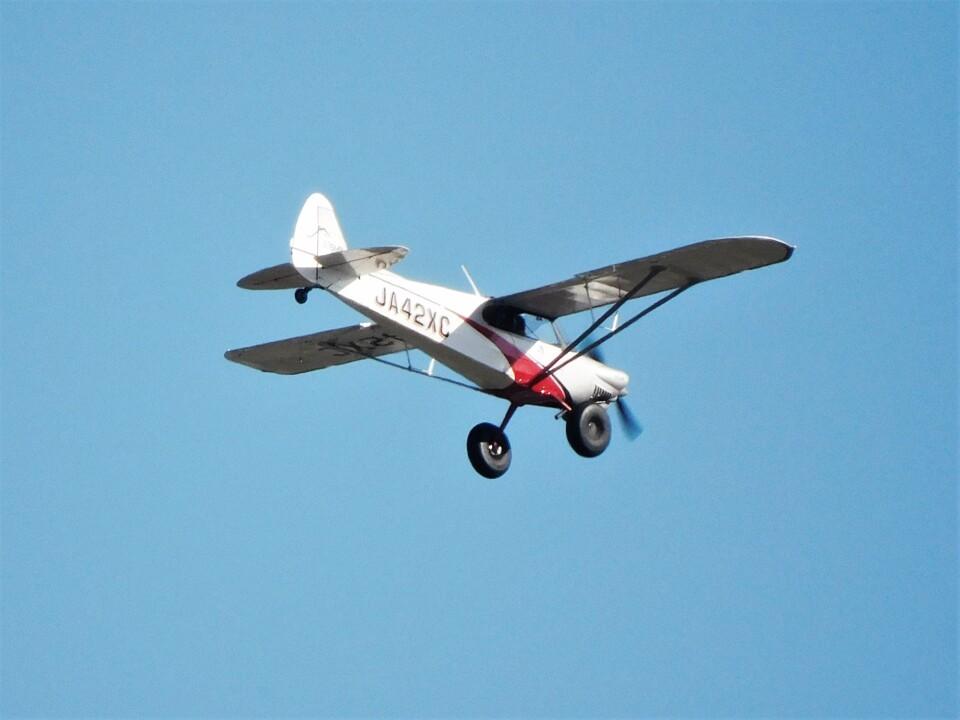 tetuさんのニセコ・アビエーション Cub Crafters CC19-180 XCub (JA42XC) 航空フォト