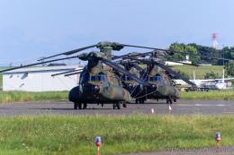 dragonflyさんが、札幌飛行場で撮影した陸上自衛隊 CH-47JAの航空フォト(飛行機 写真・画像)
