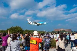みなかもさんが、成田国際空港で撮影した全日空 A380-841の航空フォト(飛行機 写真・画像)