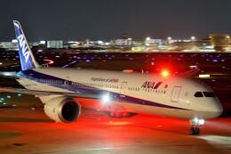 raiden0822さんが、福岡空港で撮影した全日空 787-9の航空フォト(飛行機 写真・画像)