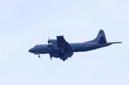 横田基地 - Yokota Airbase [OKO/RJTY]で撮影されたカナダ軍 - Canadian Armed Forcesの航空機写真