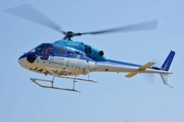 ブルーさんさんが、静岡ヘリポートで撮影したエクセル航空 AS355N Ecureuil 2の航空フォト(飛行機 写真・画像)