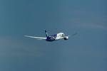 rjnsphotoclub-No.07さんが、羽田空港で撮影した全日空 787-8 Dreamlinerの航空フォト(写真)