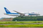 KAMIYA JASDFさんが、成田国際空港で撮影した全日空 787-8 Dreamlinerの航空フォト(飛行機 写真・画像)