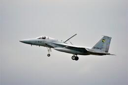 hidetsuguさんが、千歳基地で撮影した航空自衛隊 F-15J Eagleの航空フォト(飛行機 写真・画像)