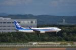 ぬま_FJHさんが、新千歳空港で撮影した全日空 737-881の航空フォト(飛行機 写真・画像)