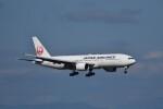 ぬま_FJHさんが、新千歳空港で撮影した日本航空 777-289の航空フォト(飛行機 写真・画像)