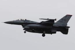 木人さんが、千歳基地で撮影したアメリカ空軍 F-16CM-50-CF Fighting Falconの航空フォト(飛行機 写真・画像)