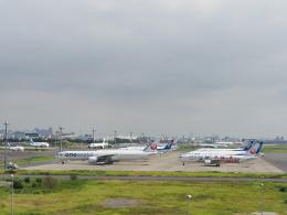 ガスパールさんが、羽田空港で撮影した日本航空 777-346/ERの航空フォト(飛行機 写真・画像)