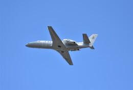 RyuRyu1212さんが、横田基地で撮影したアメリカ海兵隊 UC-35D Citation Encore (560)の航空フォト(飛行機 写真・画像)
